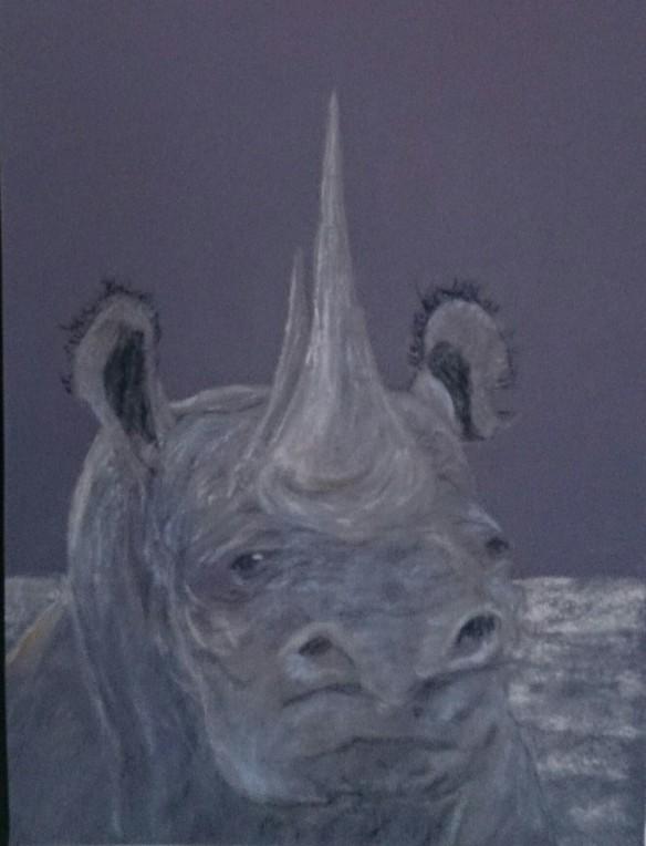 Rhino-pastel